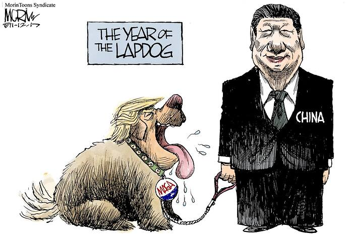 the year of the lapdog china